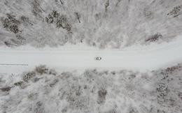 24h qua ảnh: Tuyết đầu mùa phủ trắng rừng cây ở Trung Quốc