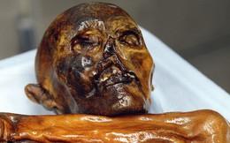 Phát hiện hành tung của xác ướp 5.300 năm tuổi