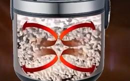 Bác sĩ Việt tại Mỹ: 3 sự thật về nồi cơm điện tách đường, ai dùng cẩn thận mắc thêm bệnh