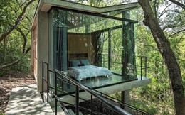 Độc đáo với phòng ngủ giữa cánh rừng