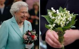 Liên tiếp nhận được hoa có độc trong một tuần, Nữ hoàng nói câu này khiến ai cũng bật cười