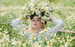 Thiếu nữ phương Tây khoe sắc giữa đồng hoa hoạ mi Hà thành