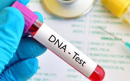Ôm mộng thần đồng, nhiều phụ huynh Trung Quốc cho con đi thử ADN kiểm tra năng lực