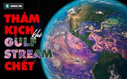 'Quả bom nhiệt' kích hoạt, giết chết hải lưu Gulf Stream: Viễn cảnh đáng sợ nào sẽ xảy ra với con người?