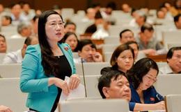 ĐBQH dẫn vụ ly hôn của ông chủ cà phê Trung Nguyên để nói về hòa giải, đối thoại tại tòa