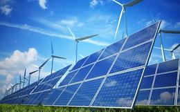 Cơ hội lớn để phát triển nguồn năng lượng tái tạo tại Việt Nam