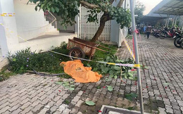 Nghi nhảy lầu chung cư Ehome 4, người đàn ông nằm chết dưới gốc cây