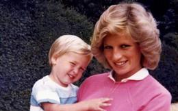 Vì sao Công nương Diana không tiết lộ chuyện mình mang thai Harry cho Thái tử Charles?