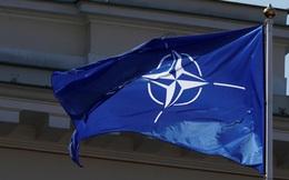 """Cho rằng NATO đang bị """"tê liệt"""", Pháp bị các đồng minh """"phản pháo"""""""