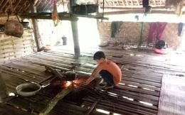 Cậu bé 10 tuổi sống cô độc giữa rừng ở Tuyên Quang lên báo nước ngoài