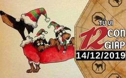 Tử vi thứ 7 ngày 14/12/2019 của 12 con giáp: Tuất nên nghiêm túc trong tình cảm, Ngọ nhận tin vui trong công việc