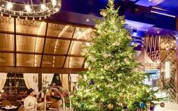 Khách sạn Tây Ban Nha chào Giáng sinh bằng cây thông đắt giá nhất thế giới