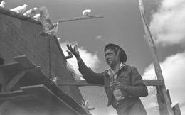 Chuyện lạ thời chiến ở Israel: Binh sĩ nhịn đói chiến đấu, chim bồ câu lại có cả xe tải đồ ăn