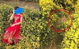 Nằm hẳn lên luống hoa cúc chụp ảnh, cô gái khiến người dân phẫn nộ, viết bài tố cáo