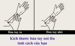 Kích thước bàn tay nói lên tính cách bạn: Người có ngón tay ngắn có thể rất giỏi lãnh đạo