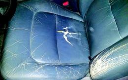 Ghế da ô tô bị rạn có thể phục hồi được không?