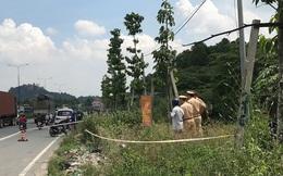 Ngồi làm cỏ ven đường, người phụ nữ bị xe trộn bê tông lao tới cán tử vong