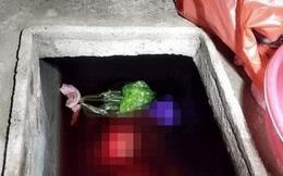 Cuộc đời bất hạnh của người phụ nữ bị con rể sát hại