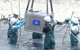 Chủ tịch Hà Nội kết luận thế nào trong buổi làm việc với Tổ chức Nhật Bản thí điểm làm sạch sông Tô Lịch