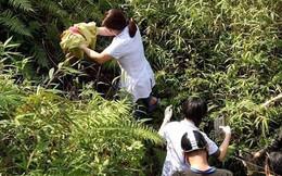 Giám đốc Sở Y tế Hà Giang: Sẽ đề nghị khen thưởng kíp đỡ đẻ dưới vực sâu