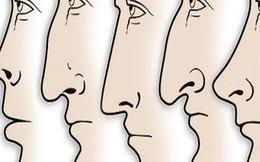 Xem tướng mũi, nhận biết nhà lãnh đạo bẩm sinh: Hấp dẫn và đầy quyền uy