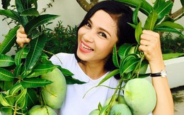 Nhà vườn bình yên và ngập tràn cây ăn quả của diễn viên Việt Trinh ở Bình Dương