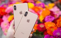 iPhone 2019 sẽ có thêm một tính năng hấp dẫn chưa từng có trong lịch sử Apple