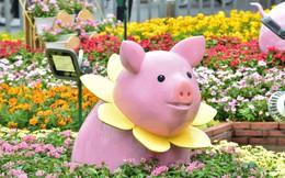 Muôn vẻ ngộ nghĩnh của những chú heo tại đường hoa Nguyễn Huệ
