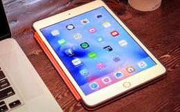 Apple sắp ra mắt iPad Mini phiên bản mới nhưng thông tin này thì lại có thể khiến nhiều người thất vọng