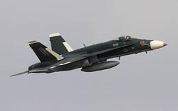 Tiêm kích Su-30 Nga bất ngờ xuất hiện tại Mỹ với hình dạng kỳ lạ