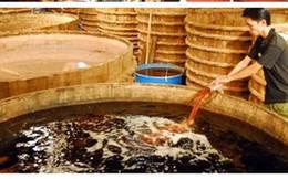 """TS Hồng Minh: """"Pha chế hóa chất không thể gọi nước mắm mà chỉ là nước chấm thôi!"""""""