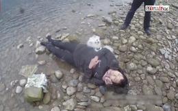 Video chú chó 'nhanh trí' cứu chủ thoát chết bên bờ sông
