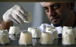 Những loại phô mai đắt một cách khó hiểu: Có loại lên tới gần 10 triệu cho nửa kg