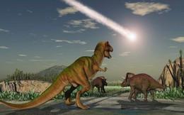 Núi lửa, chứ không phải thiên thạch, đã hủy diệt khủng long?