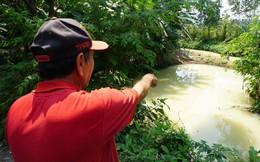 Người dân Đà Nẵng hoảng hốt khi nước kênh trắng như sữa, nồng nặc mùi thuốc trừ sâu
