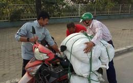 HLV U23 Indonesia tốt bụng giúp đỡ tài xế Việt trên đường phố Hà Nội