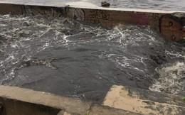 Nước cống đen ngòm tiếp tục tuôn xối xả ra biển Đà Nẵng