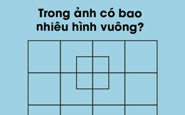 Trong ảnh có bao nhiêu hình vuông? Nhìn thì dễ nhưng hiếm ai trả lời đúng