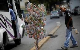 24h qua ảnh: Tiền thật được dùng làm cây giả trên đường phố Venezuela