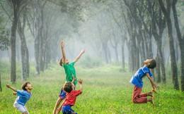 Lợi ích vô cùng to lớn khi sống trong một không gian xanh, nhất là từ thuở nhỏ