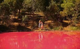 Bí ẩn hồ nước lạ chuyển màu hồng, ùn ùn người kéo đến chụp ảnh