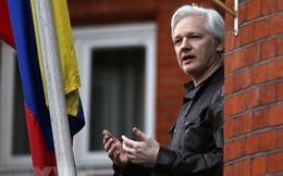 Australia phản đối án tử hình đối với nhà sáng lập WikiLeaks