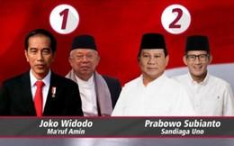 Bầu cử Indonesia 2019: Cuộc đua cuối cùng của hai ứng viên Tổng thống