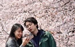 Giới trẻ Nhật Bản: Không hôn nhân, không tình dục và 'khủng hoảng còn trinh'