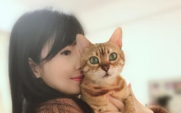 """""""Ngọc nữ"""" Châu Huệ Mẫn gây tranh cãi với tuyên bố: Thà nuôi 20 con mèo còn hơn sinh con"""