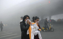 TS Việt tại Mỹ chỉ ra những con số chết người từ ô nhiễm không khí ở Việt Nam