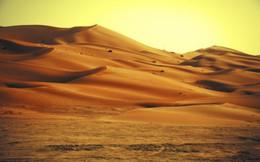 Sa mạc Sahara sẽ xanh tươi trở lại?