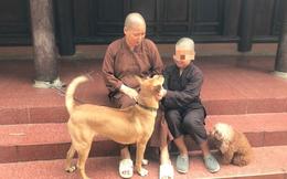 Nhà sư ở Hà Nội phủ nhận bạo hành các cháu bé được nuôi trong chùa
