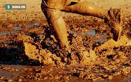 Cứu cậu bé khỏi vũng bùn, hôm sau ông bố sững sờ với lời đề nghị từ người đàn ông lạ mặt