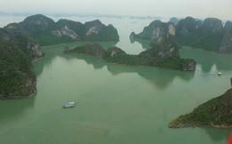 Trải nghiệm bay trực thăng ngắm cảnh vịnh Hạ Long trên không giá 3 triệu đồng/người